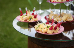 Catering service snacks on the table. Lots of different snacks on a glass table royalty free stock photo