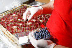 Catering suffle with berries cooking. Chef Stock Photography