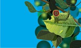 Caterpillar Royalty Free Stock Image
