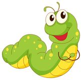 Caterpillar. Illustration of a green caterpillar cartoon Stock Photos