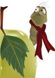 Caterpillar and apple Stock Image