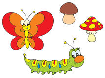 Caterpillar and Butterfly Stock Photo