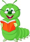 Caterpillar cartoon reading book Stock Image