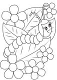 Caterpillar coloring page Stock Image