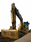 Caterpillar in dirt isolated Stock Images