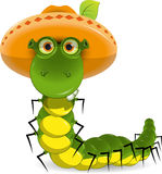 Caterpillar in the hat Stock Photography