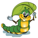 Caterpillar insect Stock Photos
