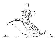 Caterpillar insect coloring pages Stock Photos