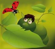 Caterpillar and ladybird Royalty Free Stock Photos