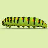 Caterpillar Royalty Free Stock Photos