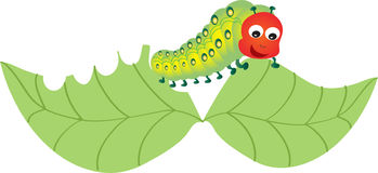 Caterpillar munching a leaf. A cartoon caterpillar munching on a leaf Stock Photo