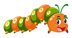 Caterpillar in orange and green color Royalty Free Stock Image