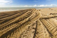 Caterpillar spår från grävaren på den steniga stranden Royaltyfria Foton