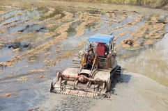 Caterpillar tractor. Plough roughly paddy field for the first time before broadcasting rice cultivation Stock Photo