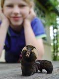 Caterpillar und Mädchen lizenzfreie stockfotografie