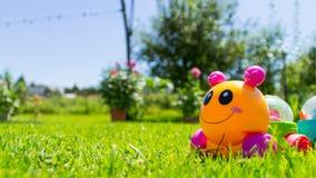 Caterpillar w trawie Obrazy Stock