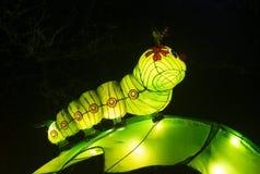 Caterpillar zrobił od papieru i świateł Zdjęcia Stock