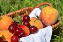 Caterpillarfruits in a basket on the green grass. Fruits in a basket on the green grass Royalty Free Stock Photos