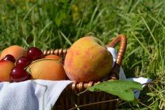 Caterpillarfruits w koszu na zielonej trawie Zdjęcie Stock