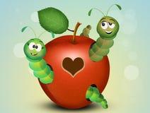 Caterpillars in the apple. Illustration of caterpillars in the apple stock illustration