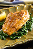 Catfish. Spiced catfish fillet on a bed of spinach Stock Images