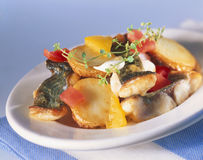 Catfish. Hash with potatoes, peppers and tomatoes stock image