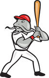 Catfish Baseball Hitter Batting Full Isolated Cartoon Stock Photography