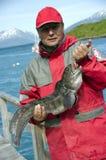 Catfish caught stock photo