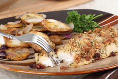 Catfish Dinner Royalty Free Stock Image
