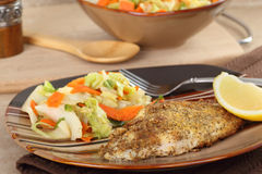 Catfish Dinner Royalty Free Stock Images