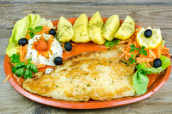Catfish filet with boiled potatoes Royalty Free Stock Image