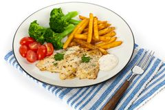 Catfish fillet Royalty Free Stock Images