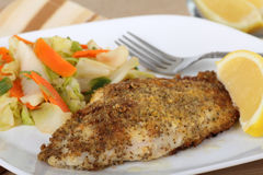 Catfish Fillet Closeup Stock Images