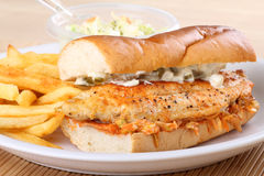 Catfish Fillet Sandwich Royalty Free Stock Photo