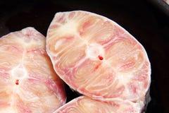Catfish fresh slices Stock Image