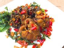 Catfish fried spicy Stock Photos