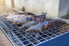 Catfish Grill On charcoal grill. Stock Image