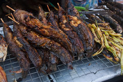 Catfish Grill waiting to be sold in the market. Stock Image