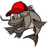 Catfish Mascot Royalty Free Stock Photography
