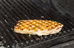 Catfish meat on the grill Stock Photography