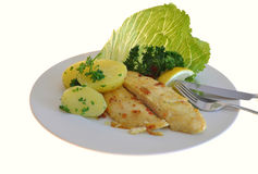 Catfish with potatoes. Catfish with boiled potatoes and salad stock photography