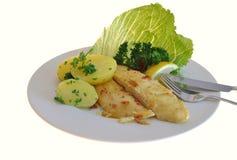 Catfish with potatoes Stock Photography