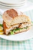 Catfish Sandwich Stock Photography
