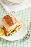 Catfish Sandwich Stock Images