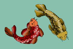 Catfish seafood image. Catfish fish image. Hand drawn  stock illustration Royalty Free Stock Images