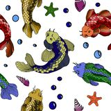 Catfish seafood image. Catfish fish image. Hand drawn  stock illustration. Seamless background pattern Stock Images