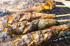 Catfishs were roasted on grill Royalty Free Stock Photo