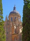 Cathédrale célèbre de Salamanque images libres de droits
