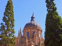 Cathédrale célèbre de Salamanque image stock