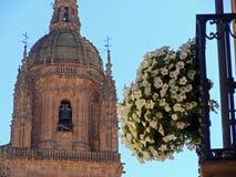 Cathédrale célèbre de Salamanque photos stock